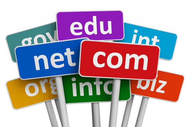 Which Domain Name URL